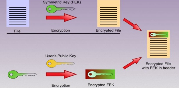 What is a public key encryption system? - ProProfs