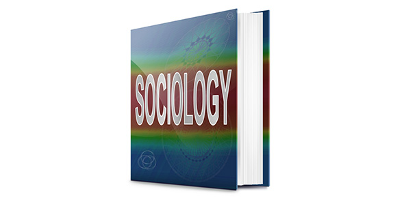 sociology quiz The first sociology department in north america was established in 1892 at which university.