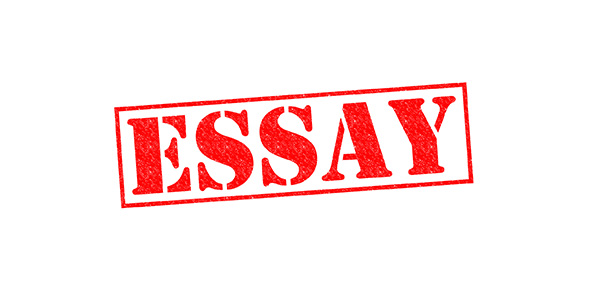Essay multiple choice quiz