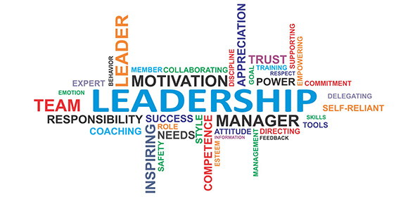 ratan tata leadership qualities essays