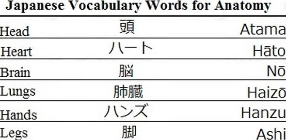 Basic Japanese Language Quiz ~ learn japanese pdf