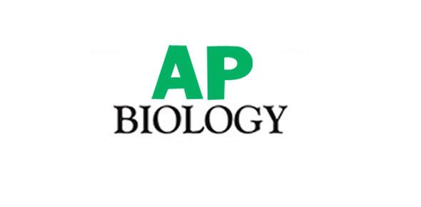 Success in ap biology essay