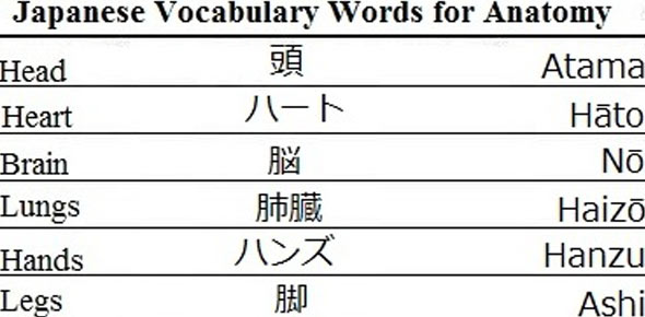 Japanese Vocab Quizzes & Trivia