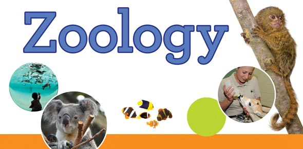 Zoology terms