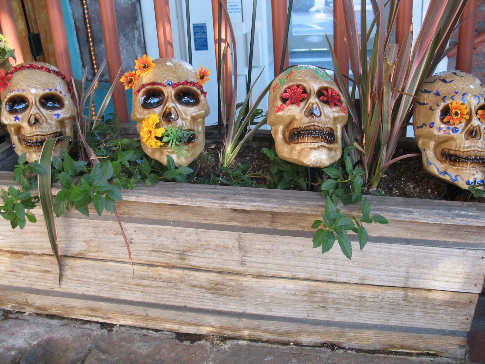 Dia de los Muertos Trivia