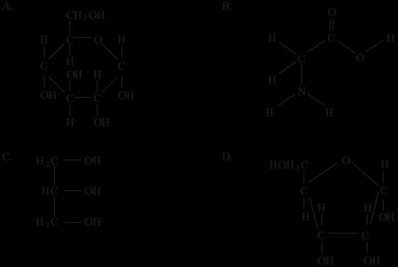Unit 3 Biochemistry Multiple IB Exam Questions