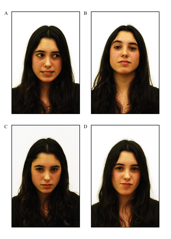 test de inteligencia emocional para adolescentes