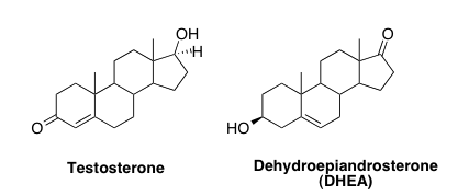 pro chem oral steroids