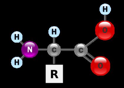 Biochemistry 3 - Amino Acids & Proteins