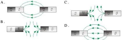 Test Online Soal Ipa Smp Bersama Proprofs Quiz Download Lengkap