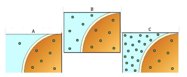 Circle Ring Diffusion