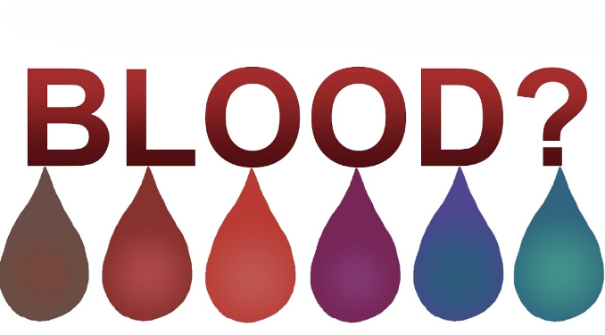 Whats The Color Of Blood Proprofs