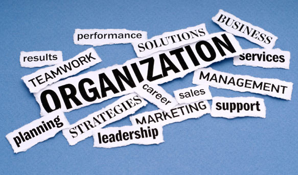 Image result for passive or active organization