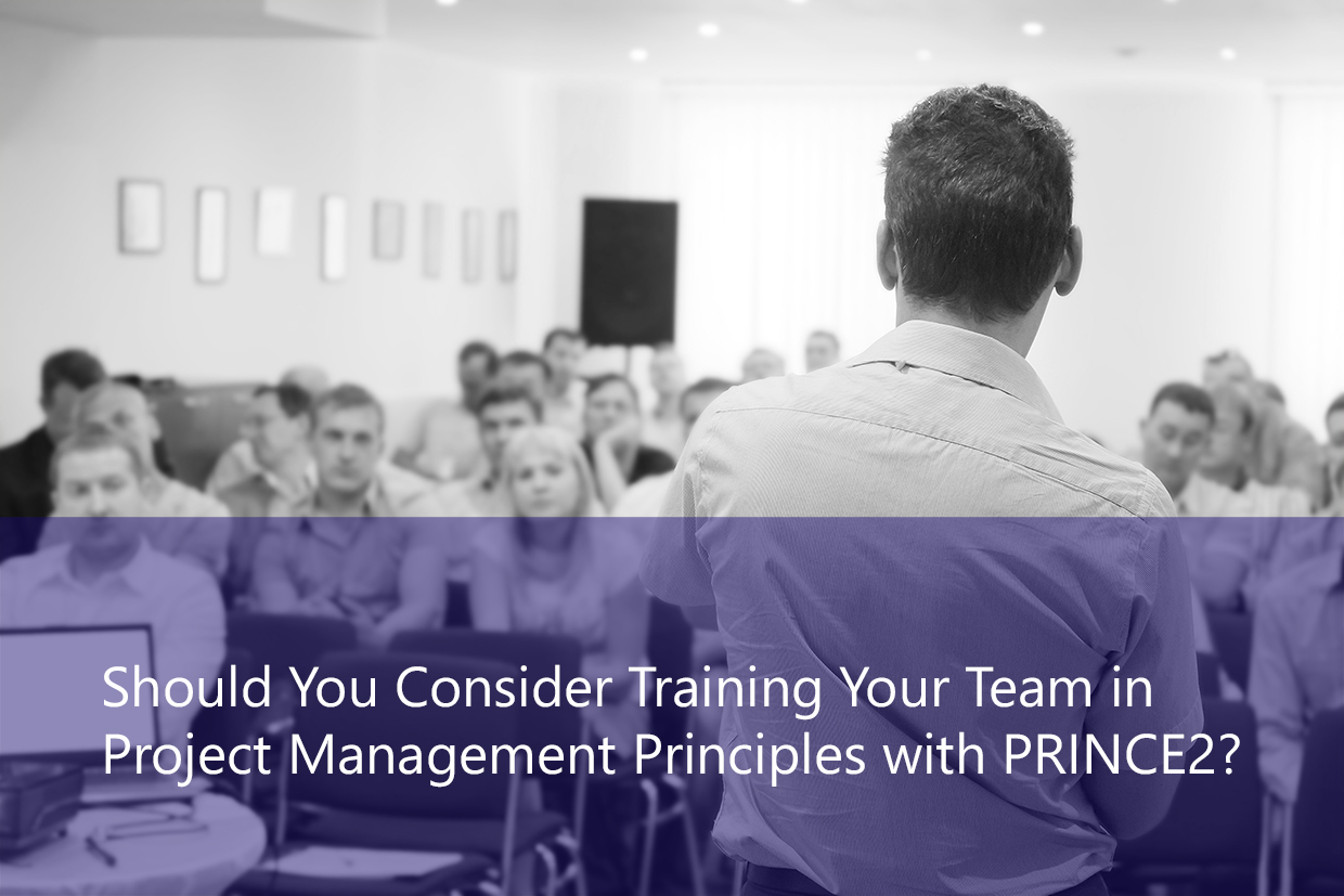 Training Your Team