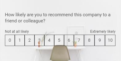 NPS Survey