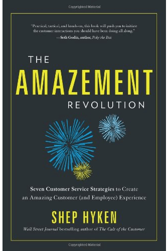 The Amazement Revolution Book