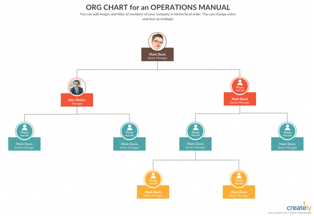 ORG chart for operations manual