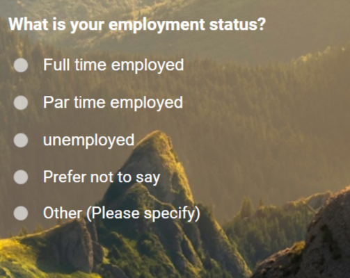 Sample Question for Employment Status