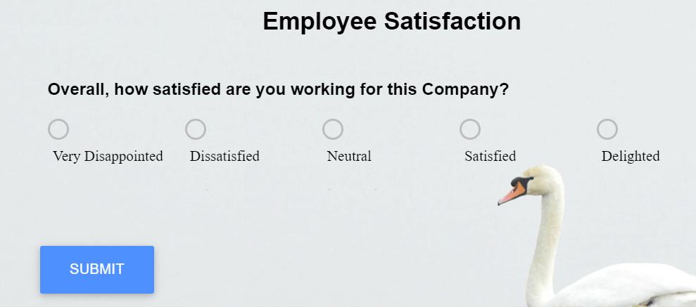 Employee Satisfaction Survey question example