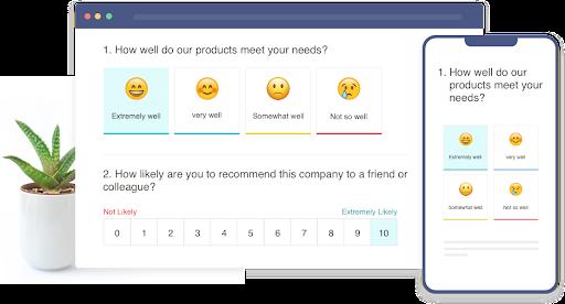Scale survey questions