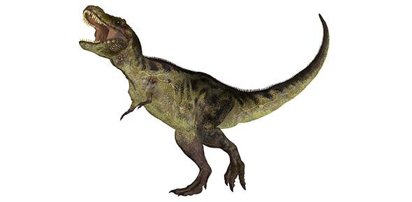 dinosaur Quizzes & Trivia