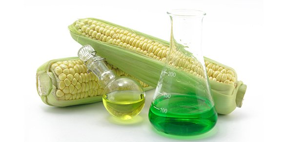 agricultural science Quizzes & Trivia