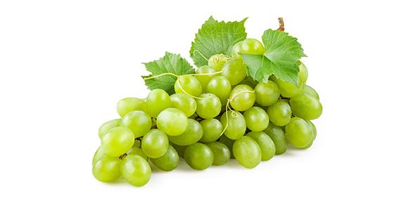 grape Quizzes & Trivia