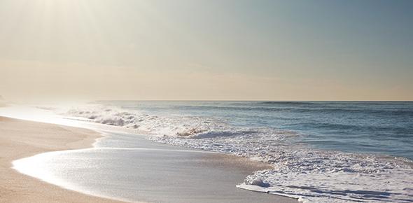 ocean Quizzes & Trivia