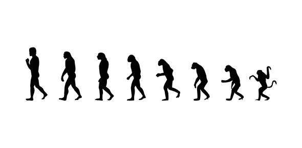 evolution Quizzes & Trivia
