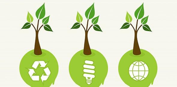 sustainable development Quizzes & Trivia