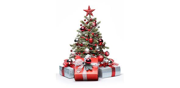 christmas Quizzes & Trivia