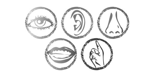thought senses and movement Quizzes & Trivia