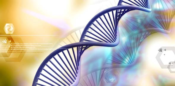 DNA Quizzes, DNA Trivia, DNA Questions