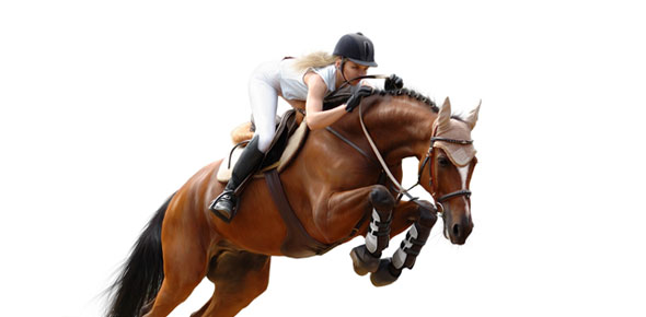 Photos of Famous Equestrians - Photos of Celebrity ...