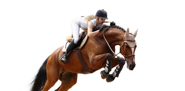 Famous Horse Rider Quiz! - ProProfs Quiz