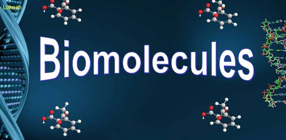 biomolecules questions