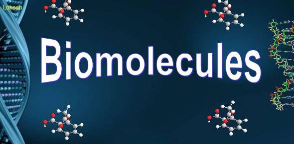 biomolecules questions