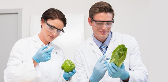 Food science Quizzes, Food science Trivia, Food science Questions