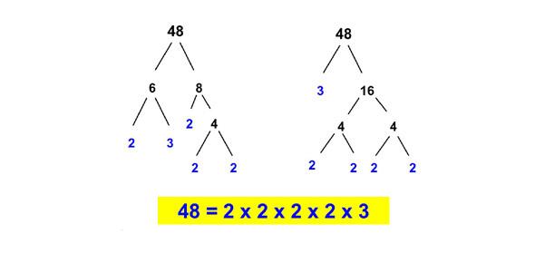 factor Quizzes & Trivia