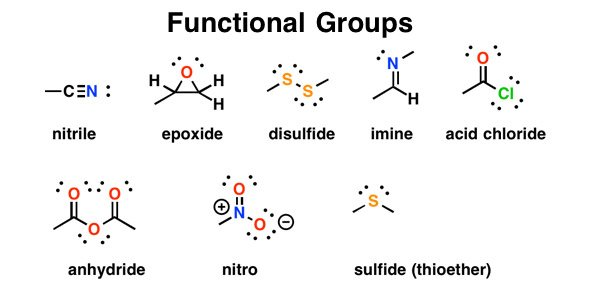 functional group suffixes proprofs quiz