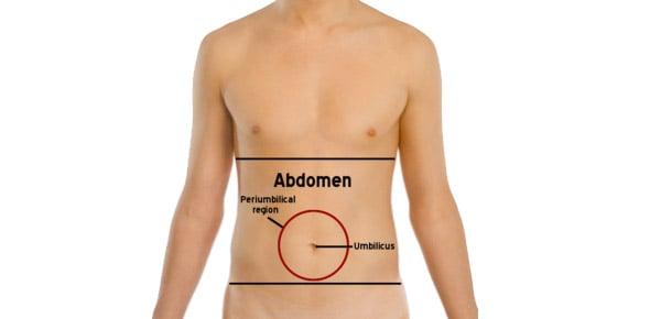 abdomen Quizzes & Trivia