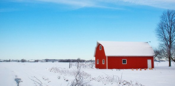 snow Quizzes & Trivia