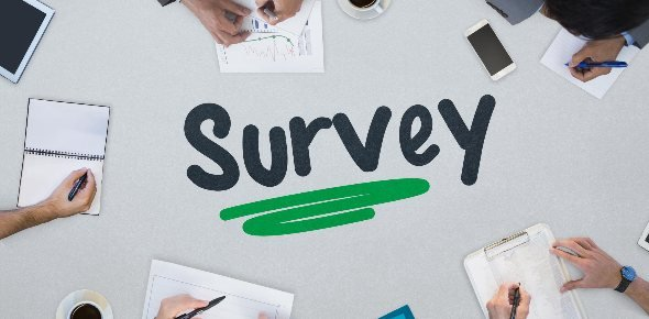 Survey Quizzes & Trivia