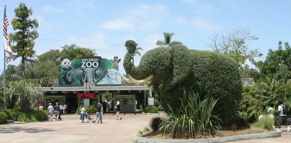Zoo Quizzes, Zoo Trivia, Zoo Questions