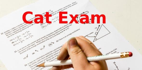 cat exam Quizzes & Trivia