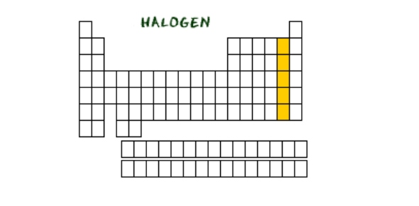 Top periodic table quizzes trivia questions answers proprofs elements of the periodic table halogen quizzes halogen trivia halogen questions urtaz Choice Image