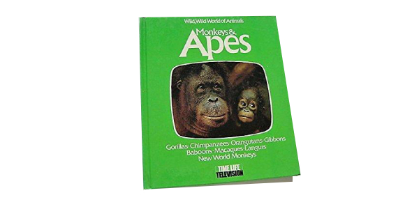 monkeys and apes Quizzes & Trivia