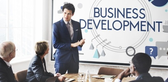 business development Quizzes & Trivia