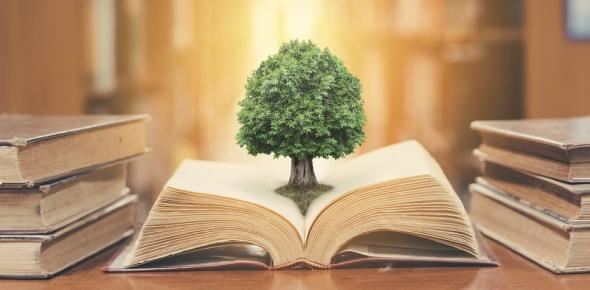philosophy of education Quizzes & Trivia