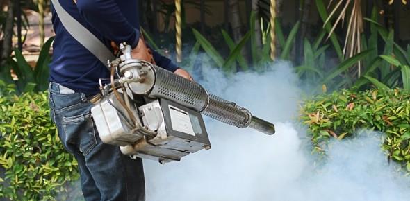 Pest Control Review Questions - ProProfs Quiz